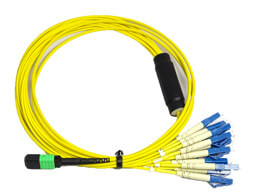 Voice and Data Cabling
